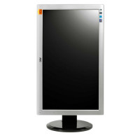 Monitor AOC 2436PWA, 23.6 Inch Full HD LED, VGA, DVI