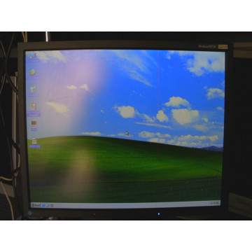 Eizo FlexScan S1721 17 inci LCD Monitoare Second Hand