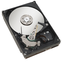 Hard Disk Server SAS 2.5, 36GB