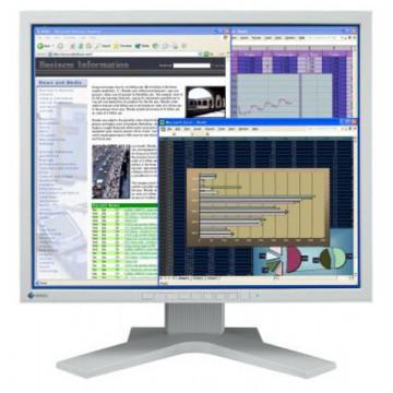Monitor Eizo Flex Scan L768, LCD 19 inch, 1280 x 1024, VGA, DVI, Grad A-, Fara Picior Monitoare cu Pret Redus