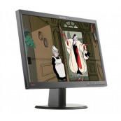 Monitor LENOVO LT2252P, LCD, 22 Inch, 1680 x 1050, VGA, DVI, Widescreen, Grad B, Fara Picior, Second Hand Monitoare cu Pret Redus